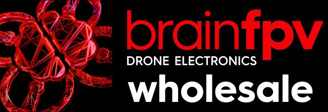 BrainFPV Wholesale